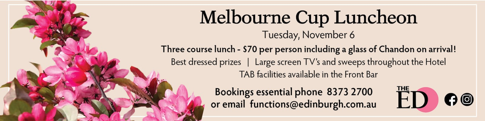 Melb Cup banner ad20